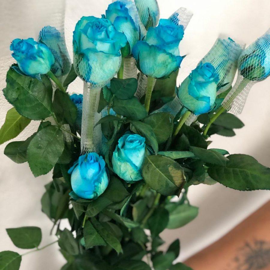 rosa azul tinturada